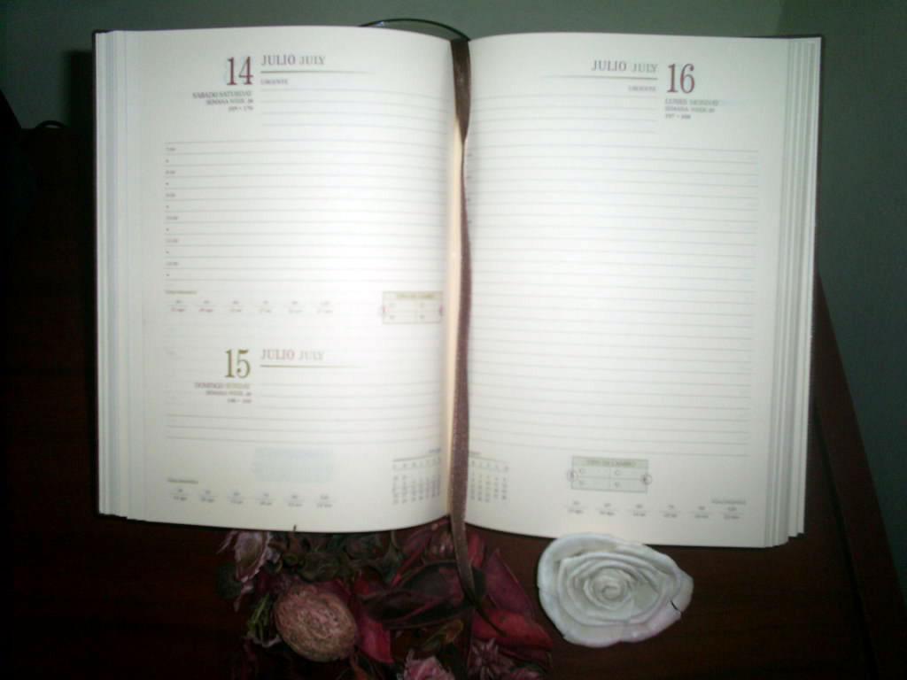 agenda-ejecutiva02