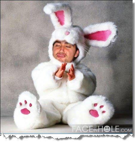 faceinhole-bunny