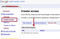 google-webmaster-tools-250x163