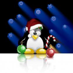 sorteo-navidad-2010-250x250