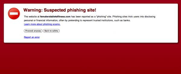 phishing-600x247